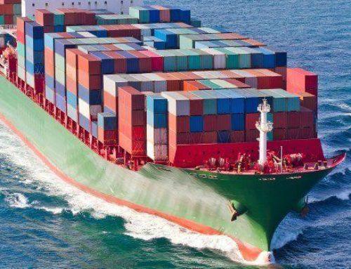 Gefährliche Passagiere im Ballastwasser großer Schiffe
